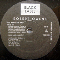 ROBERT OWENS | TOO MUCH FOR ME (ROUGH MIX)