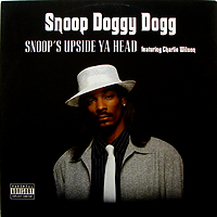SNOOP DOGGY DOGG | SNOOP'S UPSIDE YA HEAD