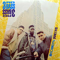 3RD BASS | BROOKLYN QUEENS