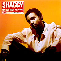 SHAGGY | WHY YOU TREAT ME SO BAD
